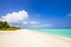 Lonesome tropical beach Stock Photo