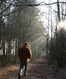 Lonesome walk. In the woods Stock Photo