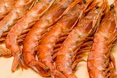 Long appetizing langoustines lots of fresh delicacies on a wooden board background culinary base prepare seafood royalty free stock images