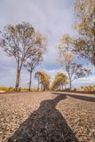 Long asphalt road on the beautiful countryside. Long asphalt road on the beautiful countryside located in Martimlongo, Portugal Stock Photography