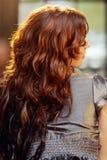Long Auburn Hair Royalty Free Stock Photos