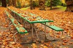 Long autumn picnic table. Long autumn green picnic table covered with fall leaves in a park Stock Images