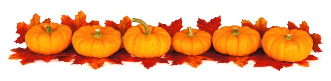 Long autumn pumpkin border Stock Photography