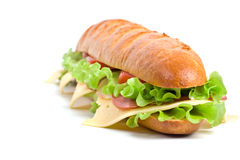 Long baguette sandwich Stock Image