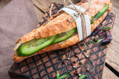 Long baguette sandwich with beef steak slices cucumber and spice Royalty Free Stock Photos