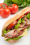 Long baguette sandwich with meat and vegetables Stock Photography