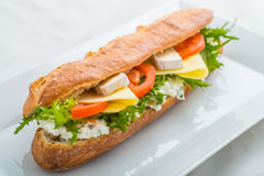 Long baguette with tofu, cheese, tomatoes and lettuce on white plate Stock Images