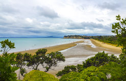 Long Bay Beach Auckland New Zealand; Regional Park. View from hill`s top Stock Photo