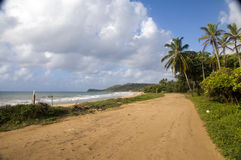 Long Bay Corn Island Nicaragua undeveloped beach Royalty Free Stock Photo