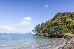 Coromandel New Zealand. Long Bay, Coromandel, New Zealand, a typical Coromandel beach, with pohutakawa overhanging the beach and sea Stock Image