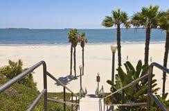 Long Beach california ocean view. Long Beach California palms sand and ocean view royalty free stock photo