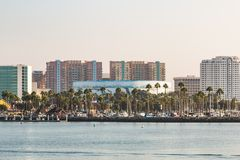 Downtown Cityscape of Long Beach with Wyland Foundation Mural Royalty Free Stock Image