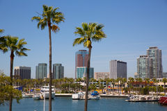 Long Beach California skyline from palm trees of port. Long Beach California skyline with palm trees from marina port USA Stock Photography