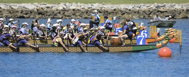 Long Beach Dragon Boat Festival Royaltyfri Bild