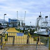 Long Beach Harbor. Beautiful picture of shrimp boats in harbor on beach stock photography