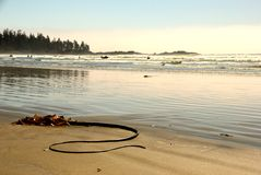 Long Beach. Hot summer day at Long Beach, Tofino, British Columbia, Canada Stock Photo