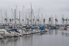 Long Beach -Jachthaven Royalty-vrije Stock Foto