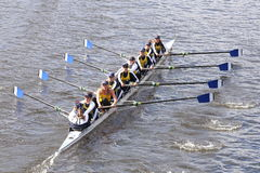 Free Long Beach Junior Crew Races In The Head Of Charles Regatta Women S Youth Eights Royalty Free Stock Photo - 61096525