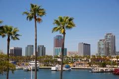 Long Beach Kalifornien horisont från palmträd av port Arkivbild