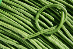 Long Bean. Pattern on nature setting royalty free stock photography