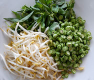 Long beans chopped bean sprouts Stock Photos