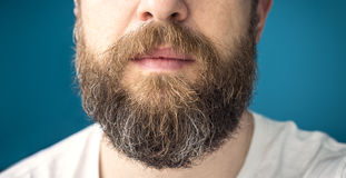 Long beard. Closeup of long beard and mustache man Stock Images