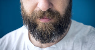 Long beard. Closeup of long beard and mustache man Royalty Free Stock Photo