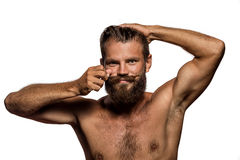 Long beard and mustache hipster Stock Image
