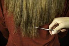Long beeing de cheveu coupé avec des ciseaux par le hairstylist Photographie stock