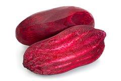 Long beet-root closeup royalty free stock photos