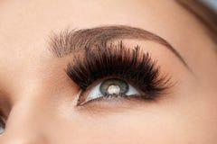 Long Black Eyelashes. Closeup Beautiful Female Eye With Makeup. Long Black Eyelashes. Closeup Of Beautiful Female Eyebrow And Big Eye With Fake Lashes. Woman stock images