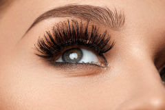 Long Black Eyelashes. Closeup Beautiful Female Eye With Makeup stock image
