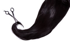 Long black hair with professional scissors royalty free stock image