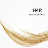 Long blond hair background. Long blond brown hair background, vector illustration Royalty Free Stock Images