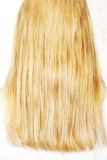 Long blond hair Royalty Free Stock Images