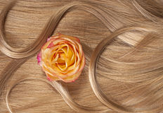 Long blond human shiny hair with a rose Royalty Free Stock Photos