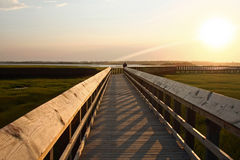 Long boardwalk over marsh Royalty Free Stock Images