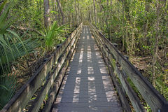 Long Boardwalk At Slough Preserve. Located at Six Mile Cypress Slough Preserve, Fort Myers - FL, USA Royalty Free Stock Photos