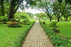Long brick walkway along with tall big trees in public park. Long brick walkway along with tall big trees in green public park royalty free stock photography