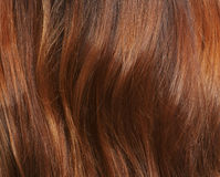 Long brown hair as background Royalty Free Stock Image