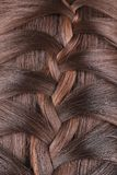 Long Brown Hair Braid. Back View. Royalty Free Stock Photography