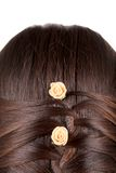 Long Brown Hair Braid. Royalty Free Stock Photography