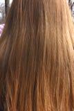 Long brown hair Stock Photos