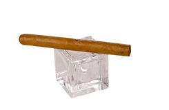 Long brown havana cigar on glass cube Royalty Free Stock Photography
