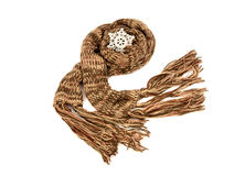 Long brown winter scarf with fringe. Royalty Free Stock Images