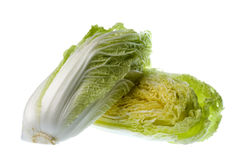 Long Cabbage Isolated Stock Image
