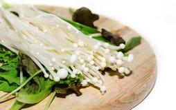 Long champignon blanc Photo libre de droits