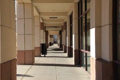 Manière d'entrée d'immeuble de bureaux avec l'arbre Image stock