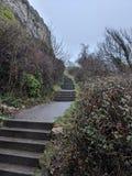 Long chemin d'escalier Images libres de droits