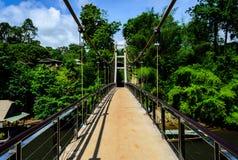 Long chemin du pont suspendu image libre de droits